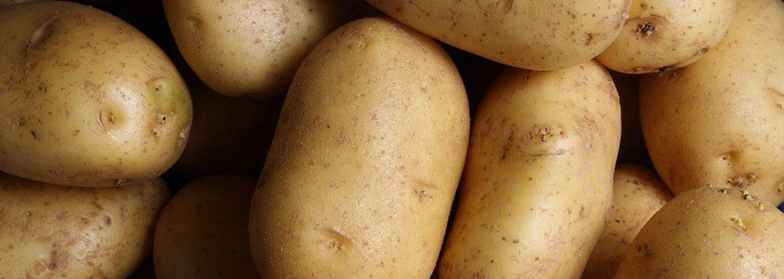 potato day