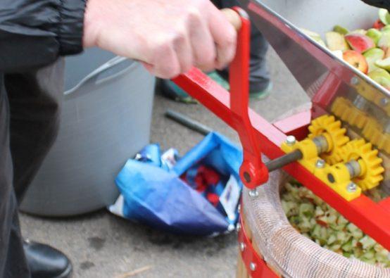 mulching apples