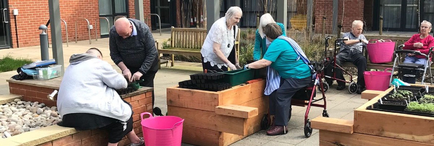 Group of older people sitting at raised beds gardening