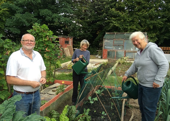 Three people tending a large area for food growing, including raised beds, growing areas, a shed and greenhouse - surrounded by trees