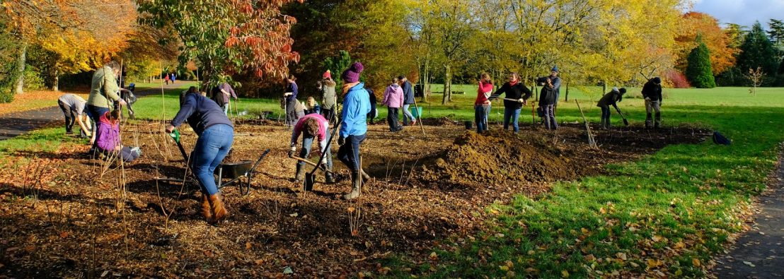 Twenty people planting on a large plot in a park - photo credit Hugh Warwick